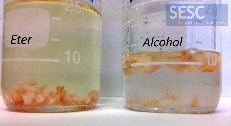 When depositing adipose tissue fragments in alcohol and ether,  ether  turned yellow  while this was not the case with alcohol, indicating that the tissue contained carotenoid pigments.
