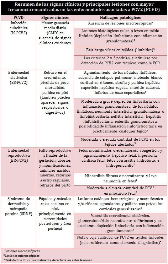 Tabla_PCV2_ESP
