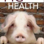 """""""Pig health"""": Promoure la salut en lloc de tractar malalties"""