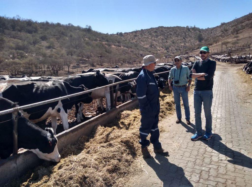 Visita a les granges. Autor: IRTA-CReSA