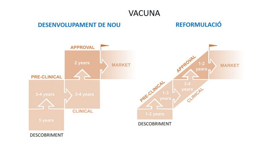 Figure 3. Different phases of a vaccine development.